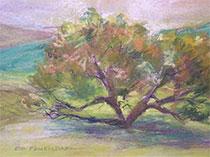 Pastel by Ed Fenendael