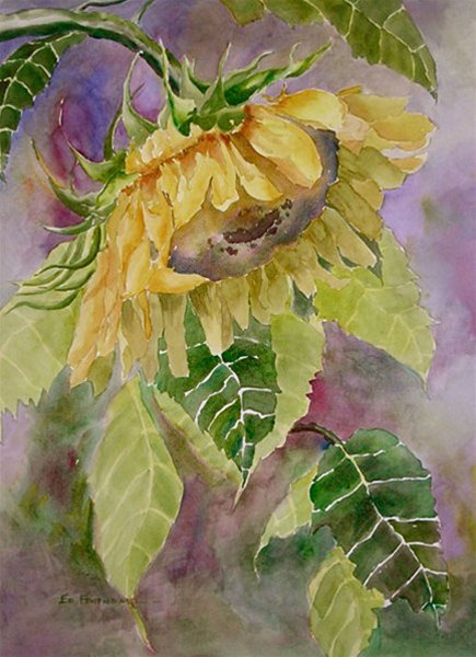 Golden Majesty - watercolor by Ed Fenendael
