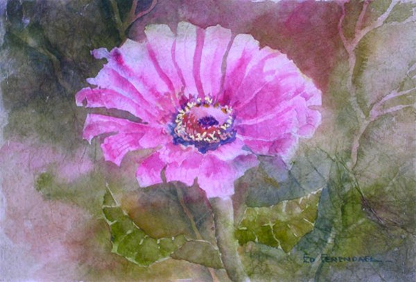 Proud & Pink - watercolor & masa by Ed Fenendael